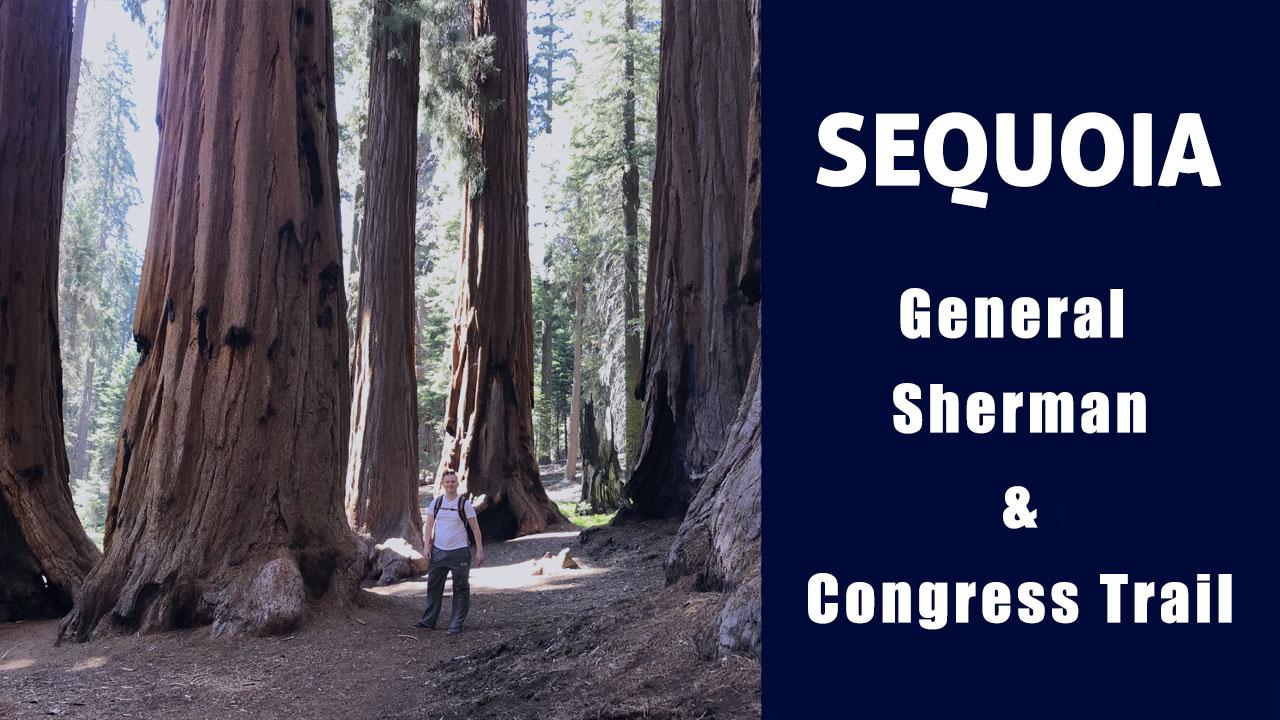 Национальный парк Секвойя: Giant Forest, генерал Шерман и Конгресс трайл